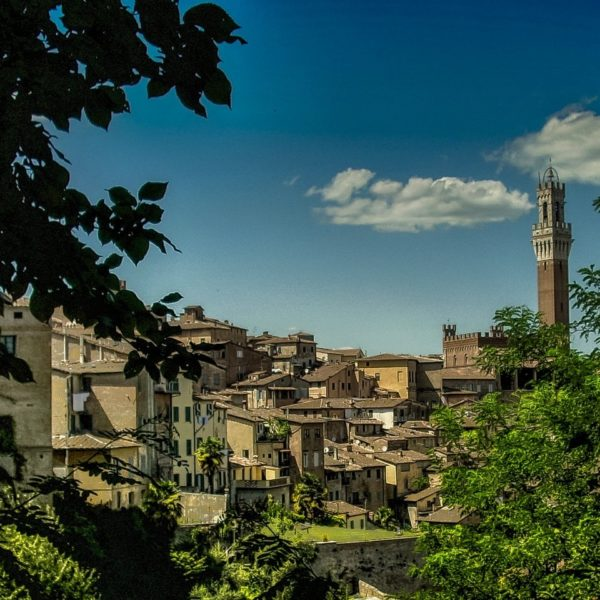 Landausflug in Livorno: Blick auf Siena