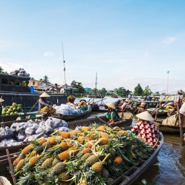 Landausflug in Phu My